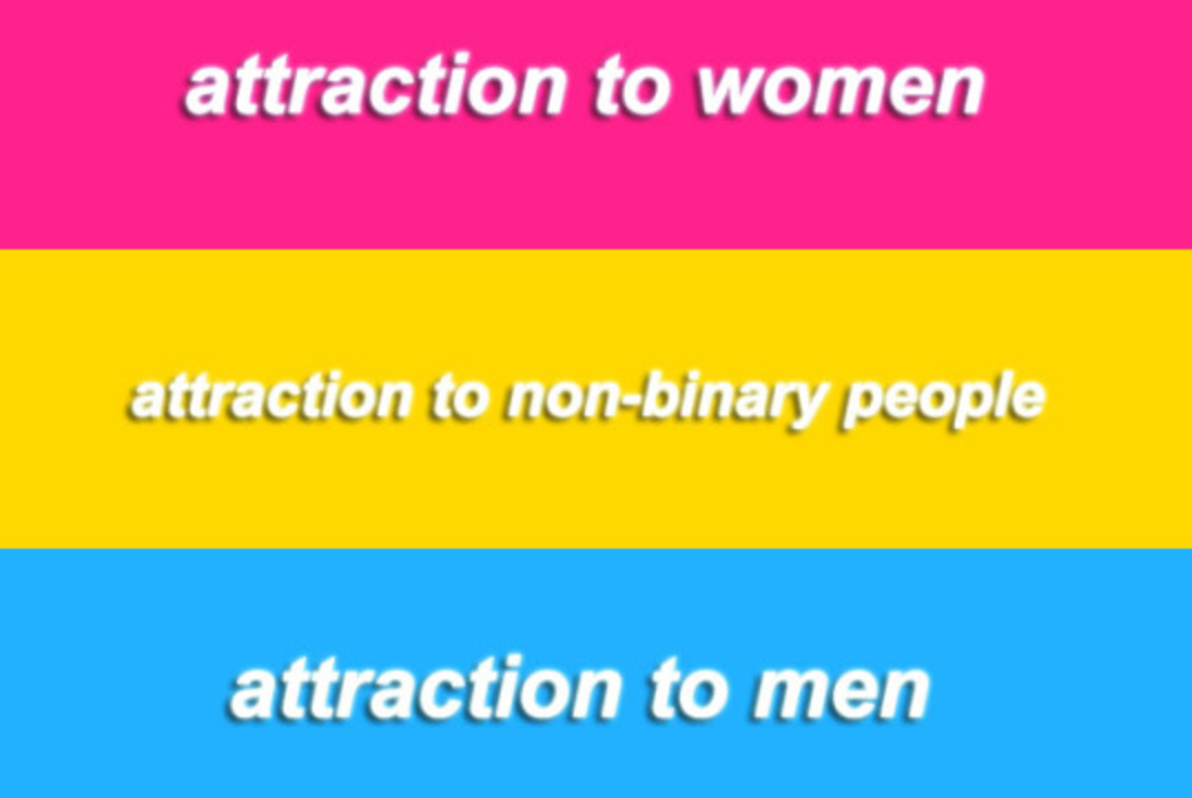 Pansexual dictionary meaning