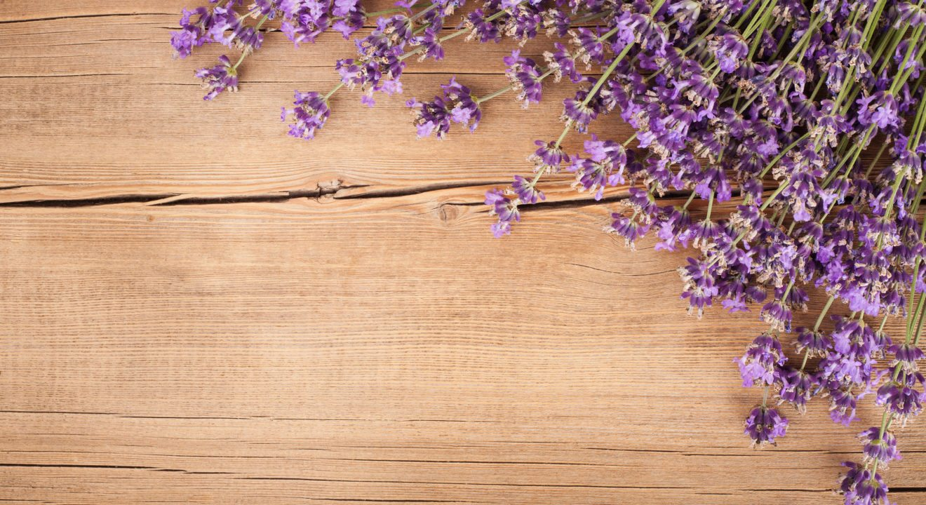 Five Flowers to Make Your Home Smell Amazing - Lavender