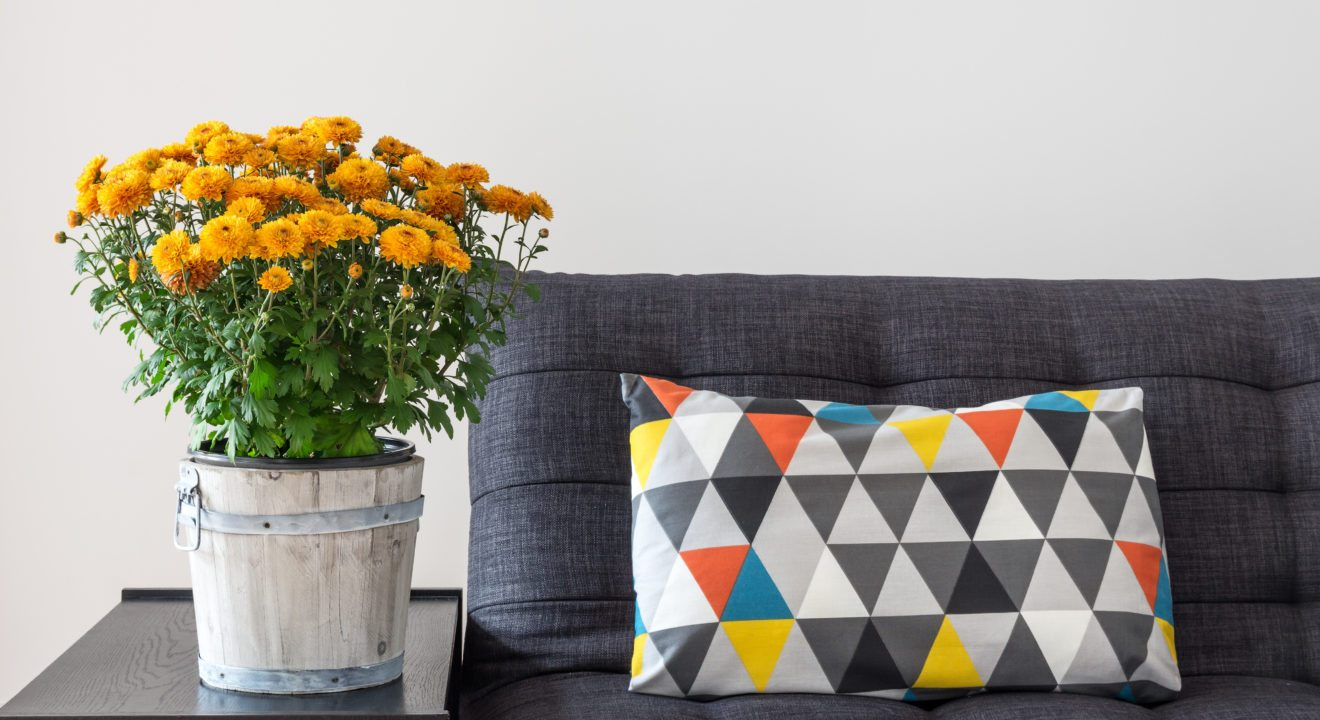 Entity shares the top fabrics for you couch.