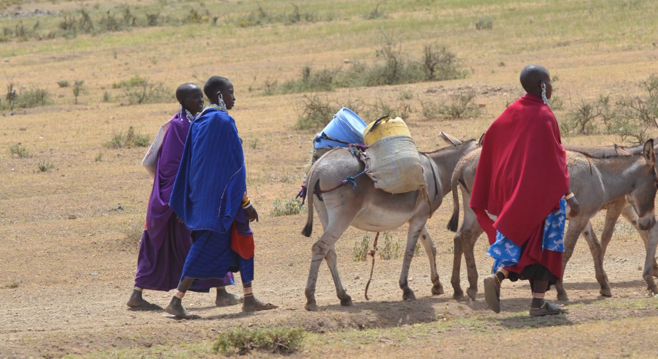 Tanzania Uber for emergencies saving lives of pregnant women, Entity.