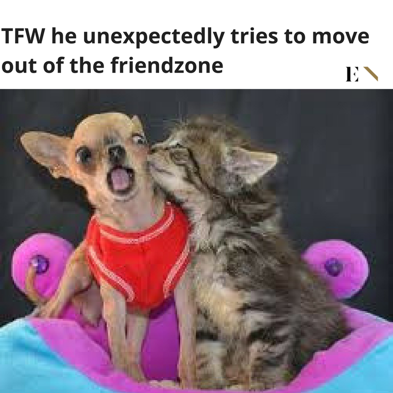 ENTITY reports on funny memes to make your day better.