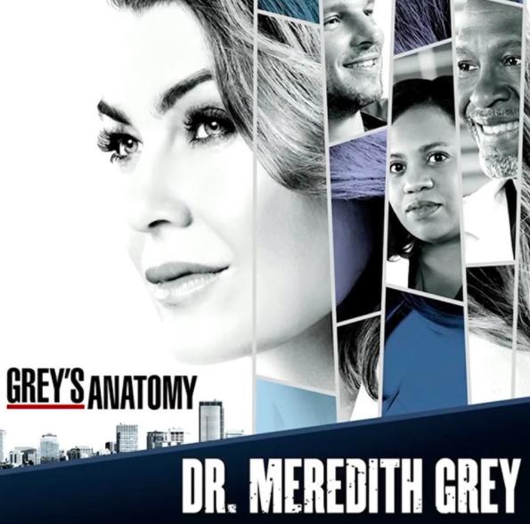 Grays anatomy characters