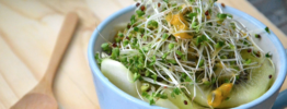 What's with the Hype Around Broccoli Sprouts?